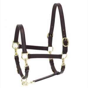 4-Way Leather Grooming Halter