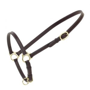 Leather Traditional Grooming Halter