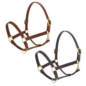 Elite Stable Halter